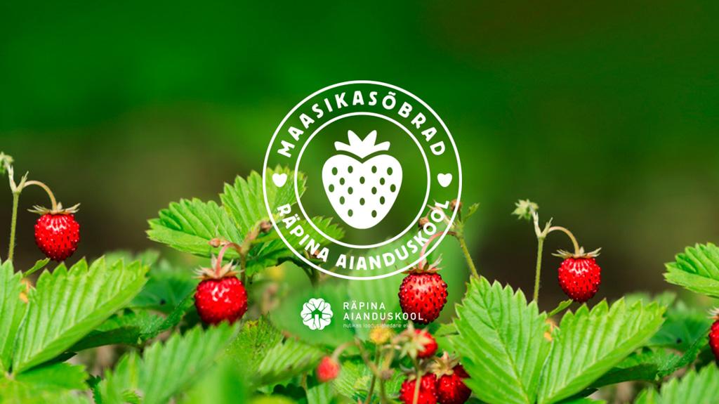 http://projekt.aianduskool.ee/maasikas6brad/